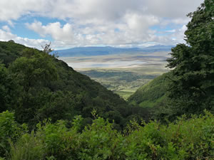 Afternoon view of Ngorongoro crater